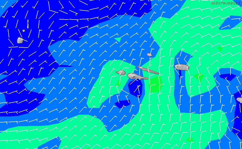 2021/3/3(水)13:00風速・風向