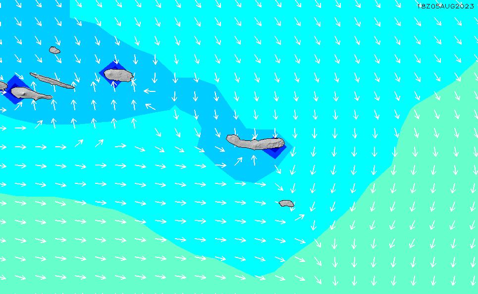 2021/1/17(日)19:00波高チャート