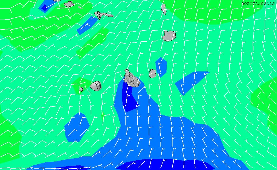 2021/3/4(木)1:00風速・風向