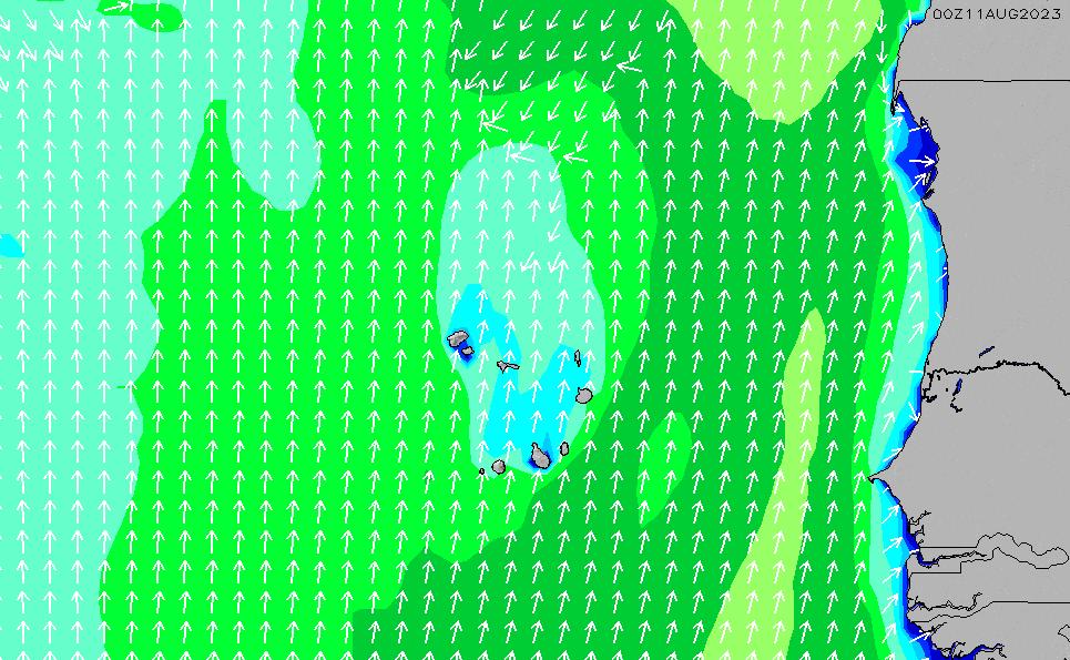 2019年12月14日(土)17:00