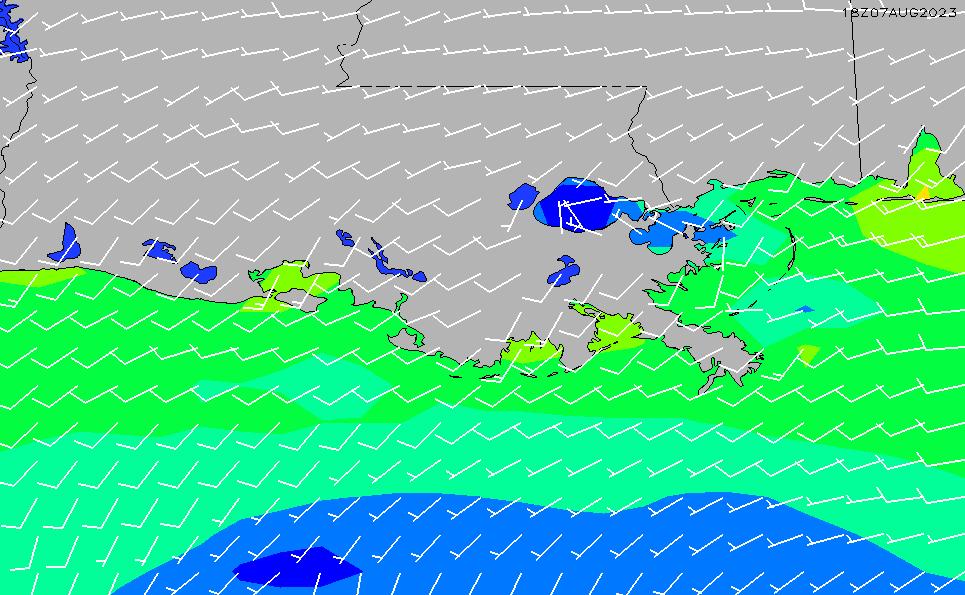 2020/9/19(土)11:00風速・風向