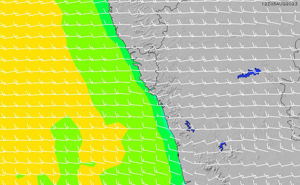 2021/5/12(水)11:00風速・風向
