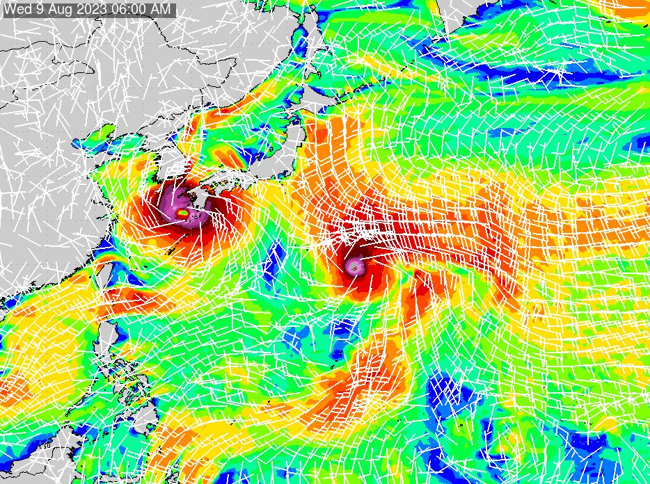 2021/1/25(月)21:00風速・風向