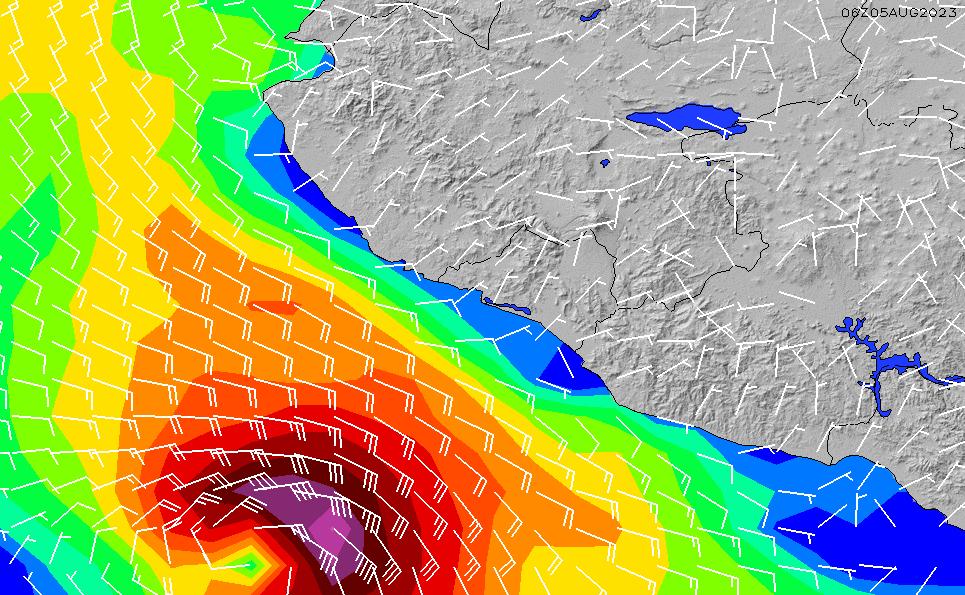 2021/3/7(日)0:00風速・風向