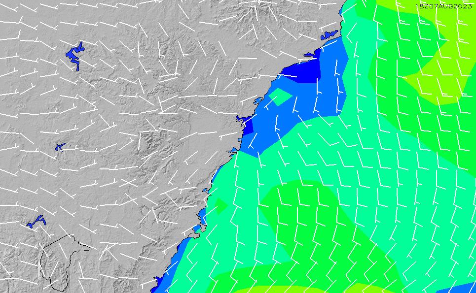 2020/7/5(日)4:00風速・風向