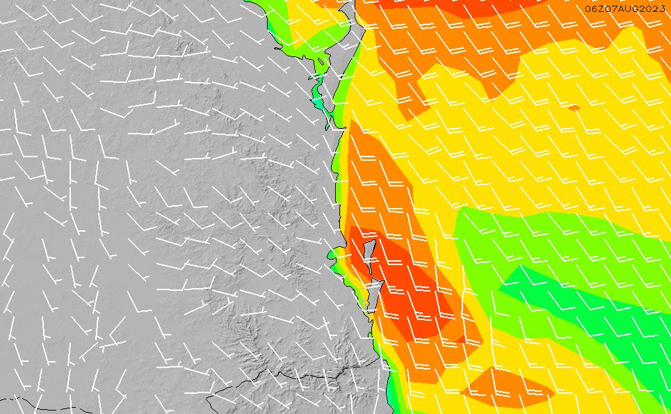 2021/5/12(水)4:00風速・風向