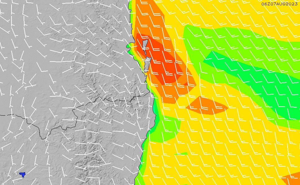 2021/2/28(日)10:00風速・風向