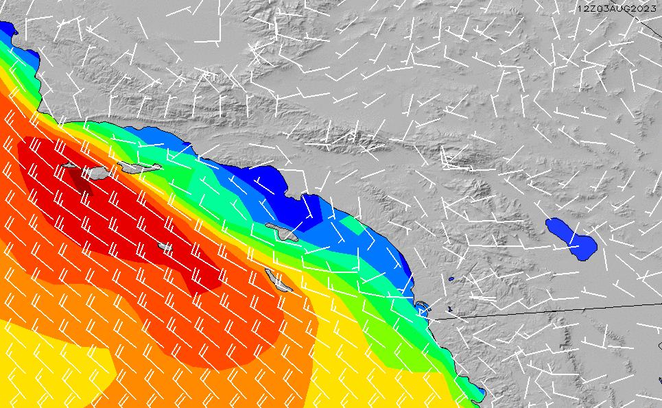 2020/8/12(水)19:00風速・風向