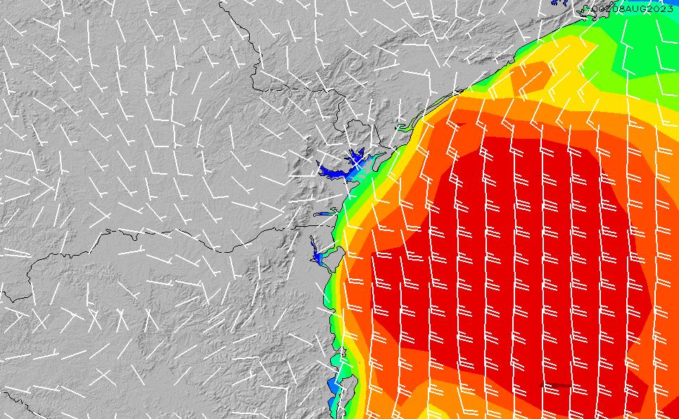 2021/3/8(月)3:00風速・風向