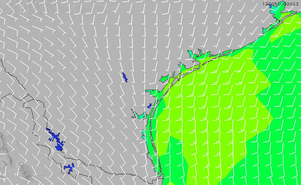 2021/3/1(月)6:00風速・風向