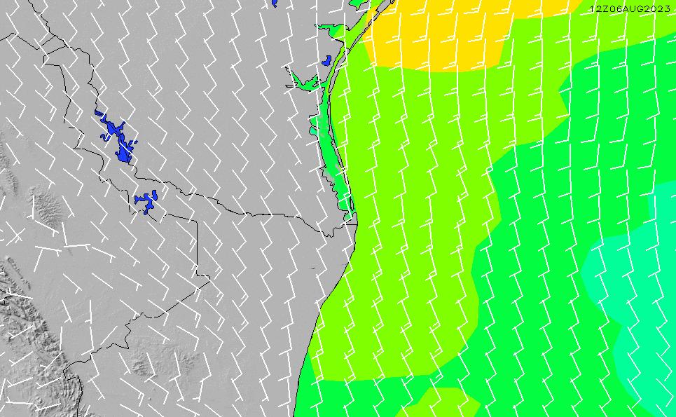 2020/6/2(火)5:00風速・風向
