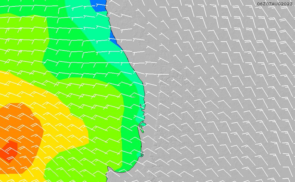 2020/9/23(水)8:00風速・風向
